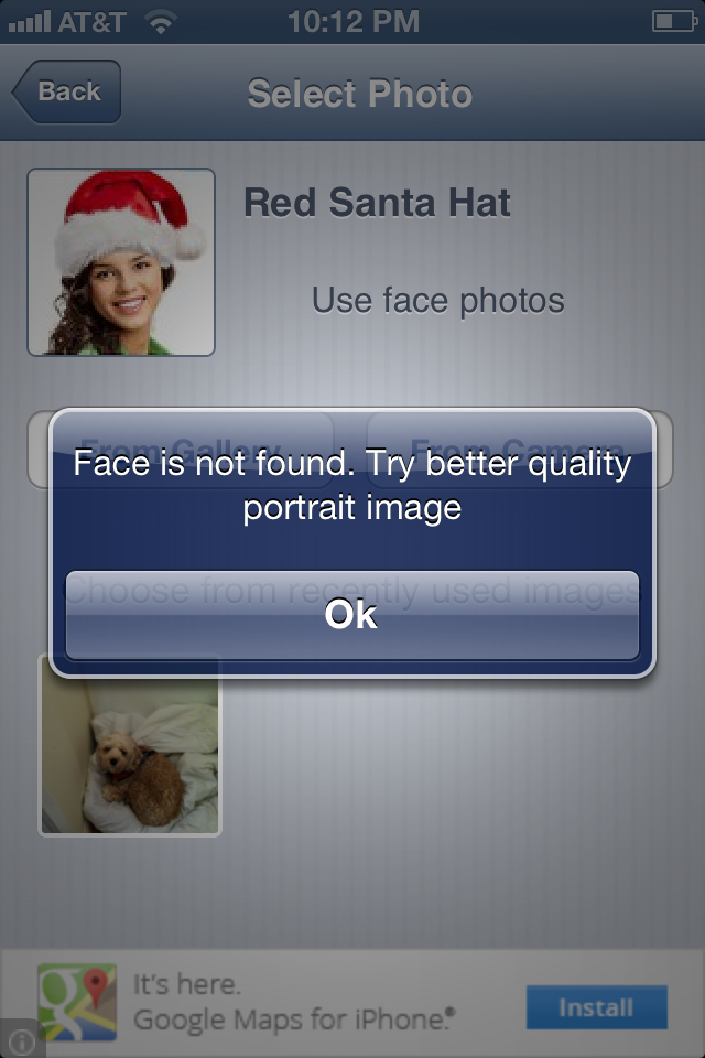 Cute Dog Picture Of The Day:  Red Santa Hat Fail
