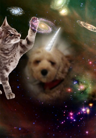 Just a Cat and a Unicorn Playing In the Cosmos