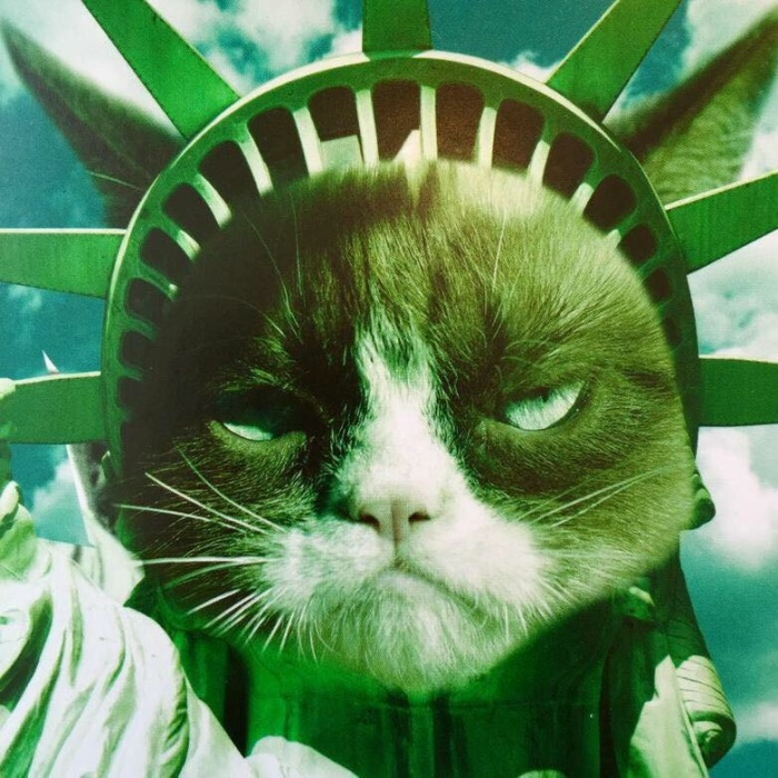 May The 4th Be With You Cat: Happy Fourth Of July From Grumpy Cat!